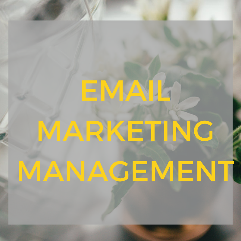 we can manage your email marketing for you